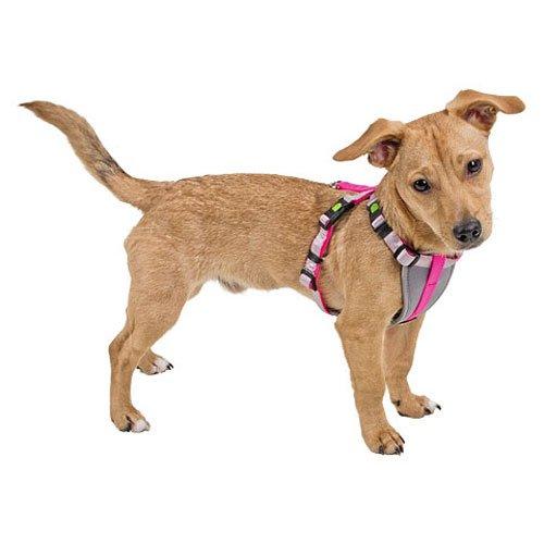 Tuigjes   Hondentuig Woezel Roze   Voor pups of kleine hondjes