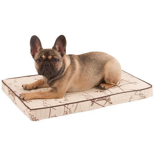 Hondenkussens | Hondenkussen Einstein