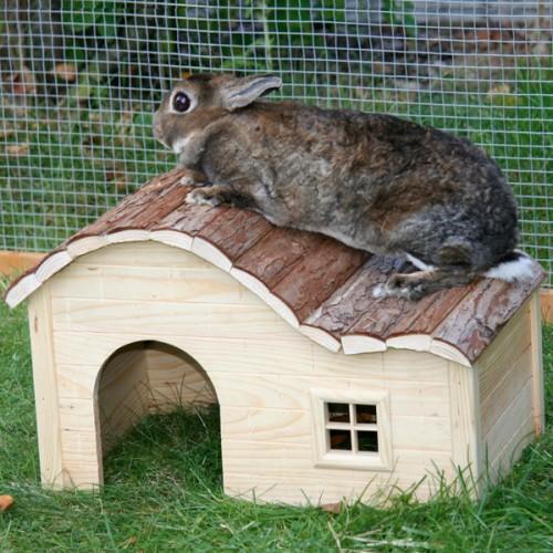 Huisje voor konijnen | Speelhuis Wave voor konijnen