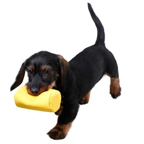 Snackdummy Geel - Geschikt voor onervaren honden
