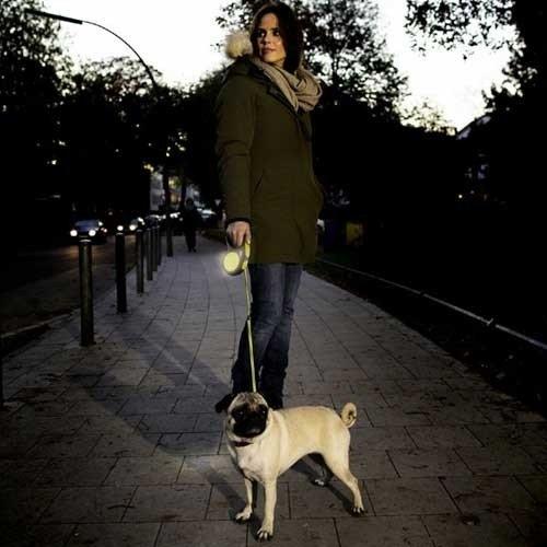 Flexi New Neon Lint | Honden tot 50kg.