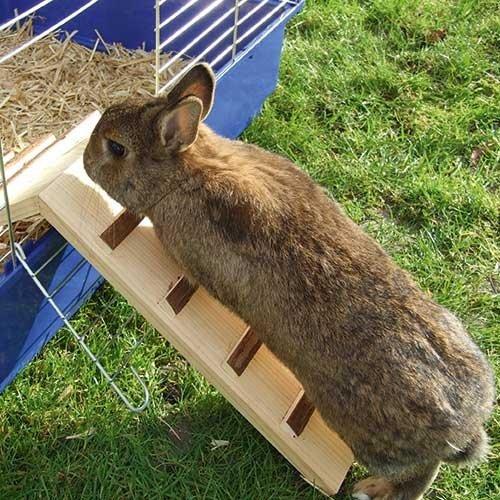 Houten loopbrug | Handig voor konijnen