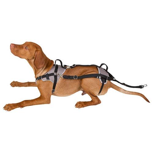 Autoveilig Hondentuigje Travel Protect   Gemaakt van optimaal ademend materiaal