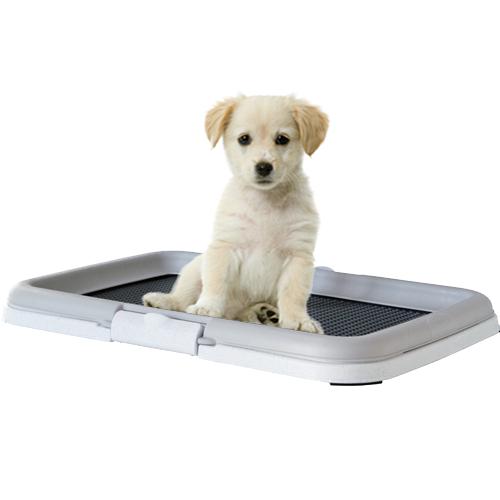 Puppytoilet Trainingsset - Hulpmiddel bij zindelijkheidstraining