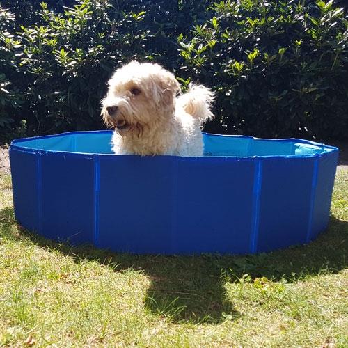 Hondenzwembad 120cm