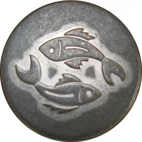 Vissen mat zilver