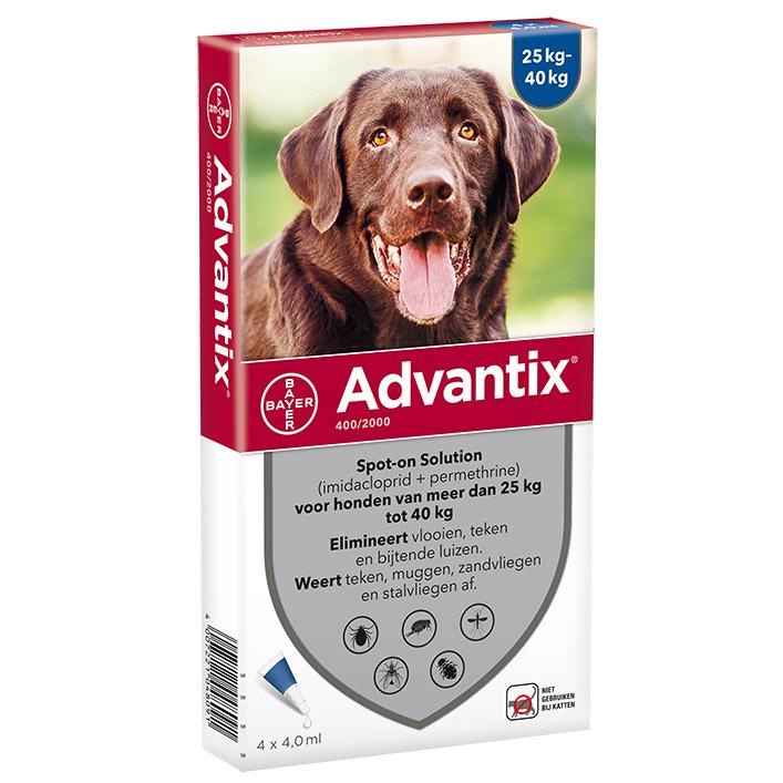 Advantix Hond 400 - 4 pipetten