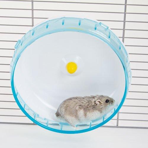 Knaagdieren | Huisjes en spelen | Hamster loopwiel