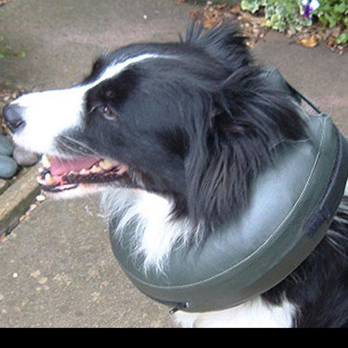 Opblaasbare hondenkraag Comfy Collar | Binnenkant uitneembaar