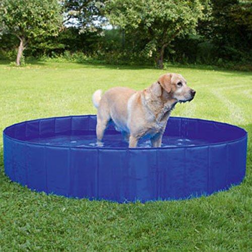 Hondenzwembad 160cm. | Zwembad voor middelgrote en grote honden