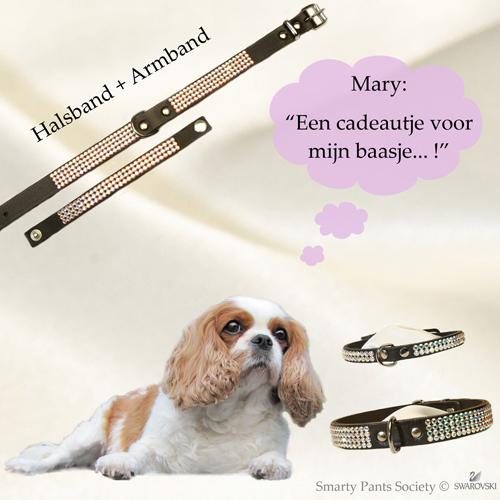 Swarovski halsband set Mary, echt chique!