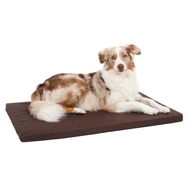 Hondenkussens | Hondenkussen Henry