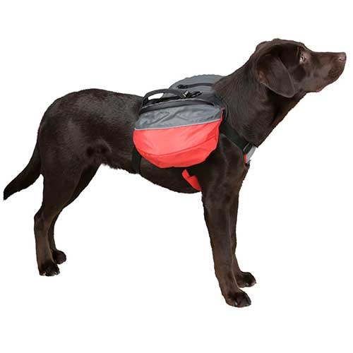 Hondenrugzak