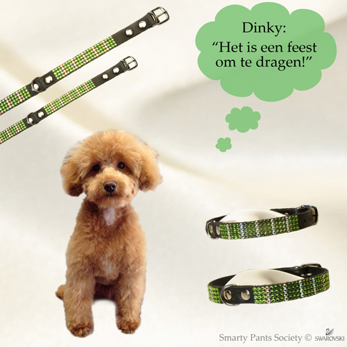 Swarovski halsband Dinky, echt chique!
