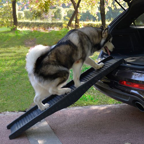 Hondenloopplank Lichtgewicht | Draagkracht tot 50kg.