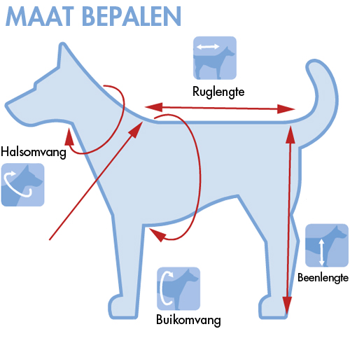 Hondentuigjes | bepalen van de juiste afmeting