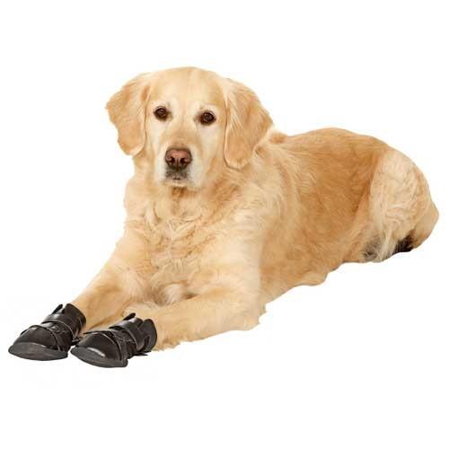 Hondenschoen De Luxe per 4 stuks