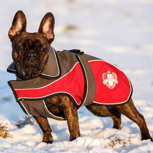 Hondenkleren | Hondenjas Lathi
