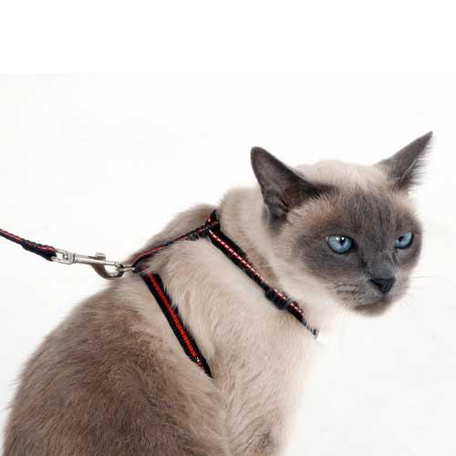 Kattentuig Nora 3-delig