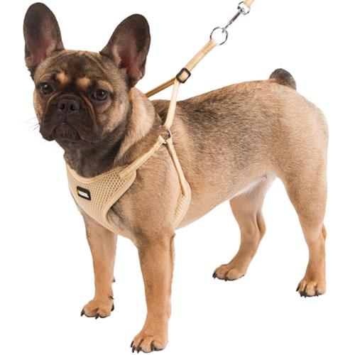 Hondentuigjes | Puppytuigje met lijn Small
