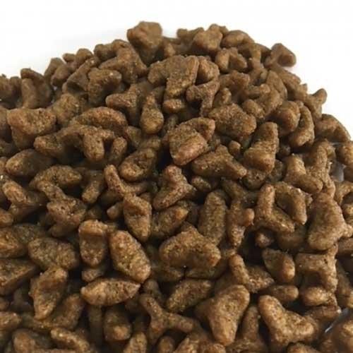 Smolke Kitten 2kg | Voordelige| Afgestemd op je kitten