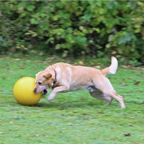 Honden speelbal  Geel | Duurzame en robuuste kwaliteit