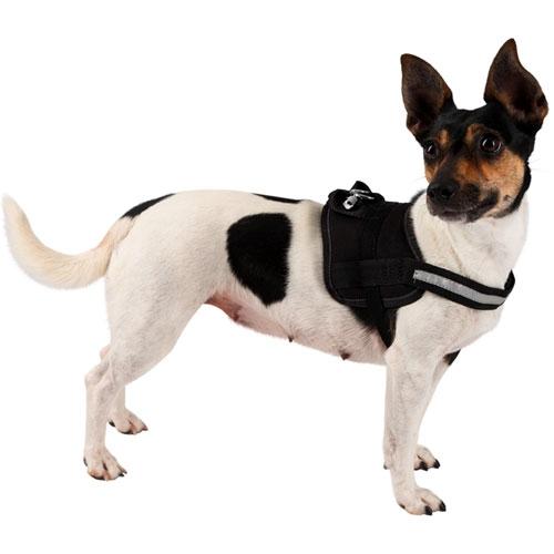 Hondenharnas Maestro 1.0