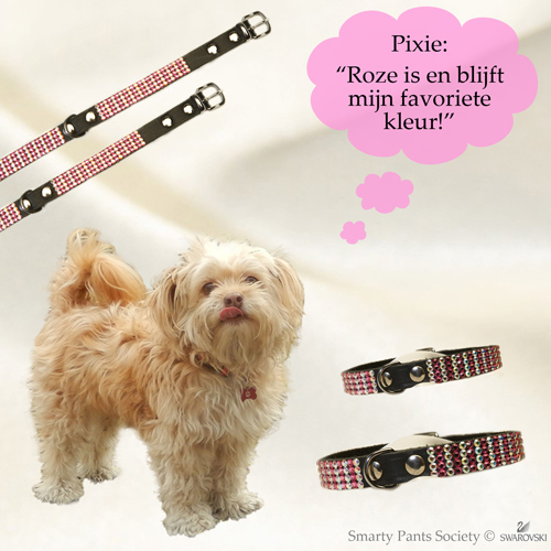 Swarovski halsband Pixie, echt chique!