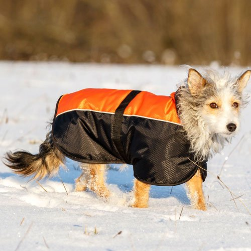Hondenkleding | Hondenjas Solden