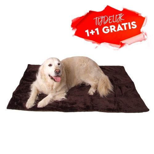 Hondenkleed Fenna bruin makkelijk te wassen