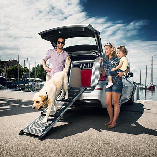 Proline Autobench   Beschermkussen voor je hond