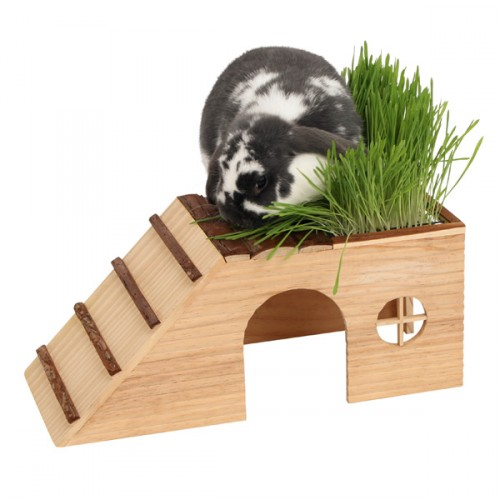 Naturel Knaagdierenhuis met oprit