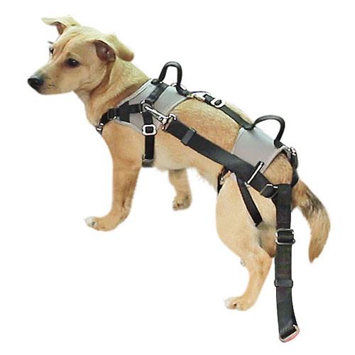 Autoveilig Hondentuigje Travel Protect Grijs   Voorzien van handige handgreep