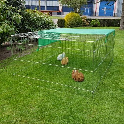 Konijnenren Marijke   Voordelige konijnenrennen
