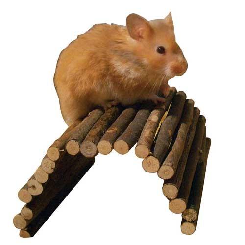 Houten Loopbrug Taila voor hamster