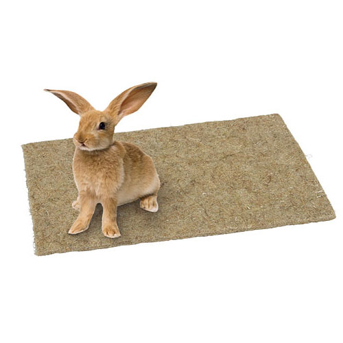 Hennep Knaagdierentapijt 40x25cm. | Natuurlijke bodembedekker