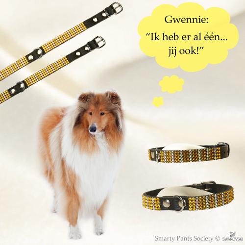 Swarovski halsband Gwenny, echt chique!