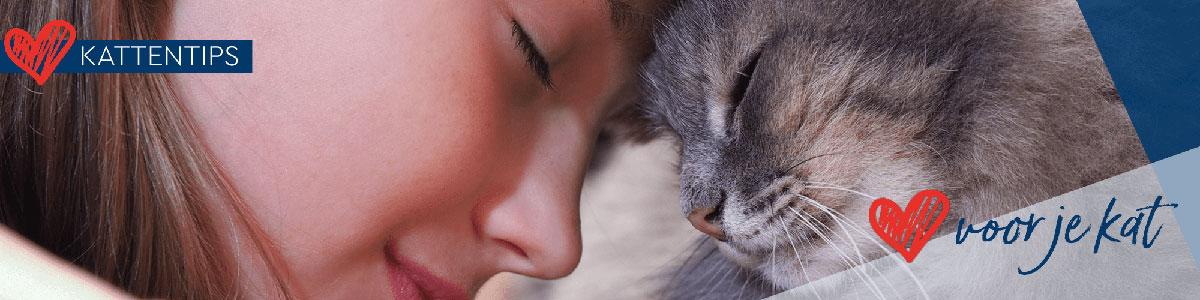 Kattenblog De Huisdiersuper