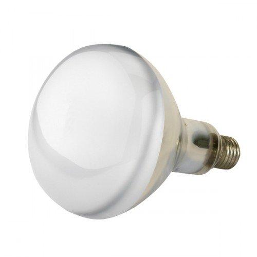 Kerbl Infrarood spaarlamp 150W wit