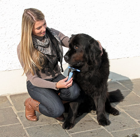 Pet Hair Remover Medium | Te gebruiken bij kortharige en langharige honden
